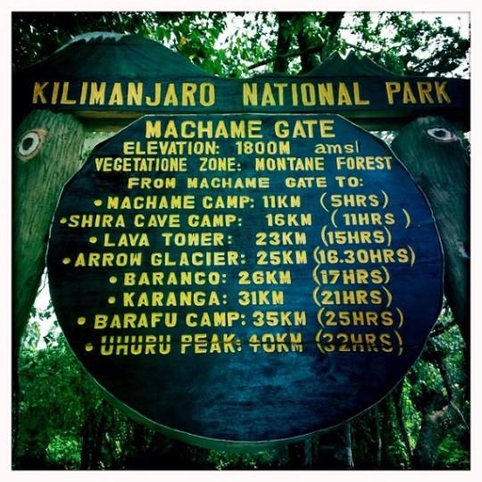 Hiking Kilimanjaro National Park