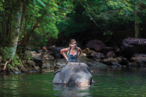 What is Ethical Elephant Tourism in Asia?
