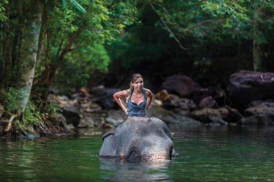 What is ethical elephant tourism?