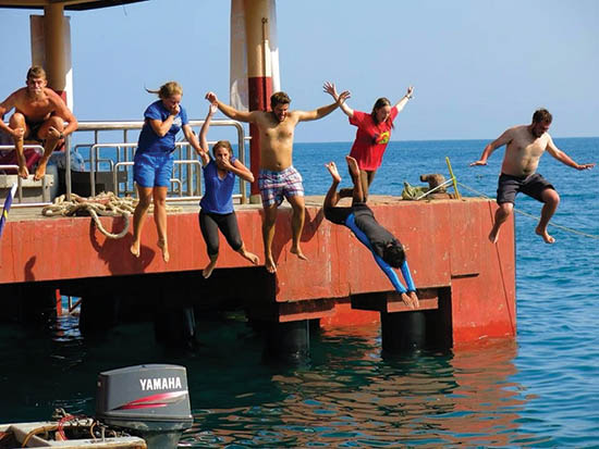 Diving into cool waters to access local damage to coral & marine life.