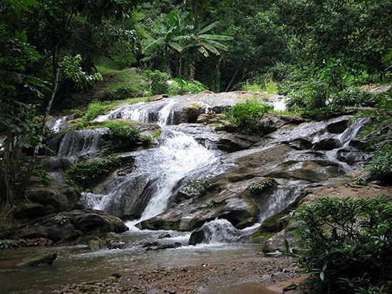 A waterfall at Queen Skirit Botanical Garden - Mae Rim.