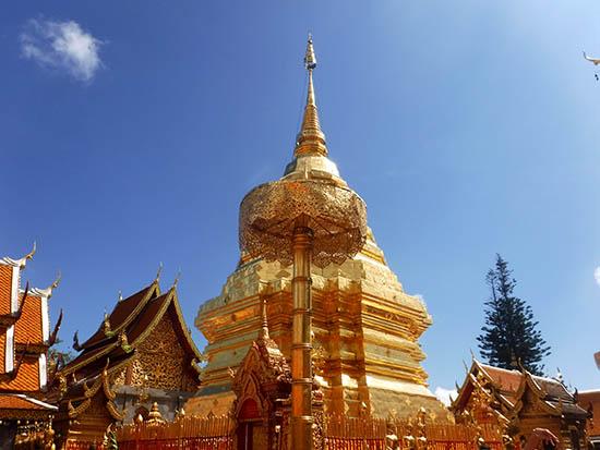 Ella Davis Chiang Mai