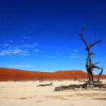 Top 10 Safari Lodges of Namibia