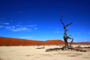 Desert Landscape Namibia Backpackers